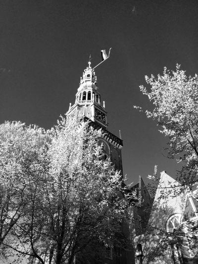 Blackandwhite Church Trees EyeEmSwiss