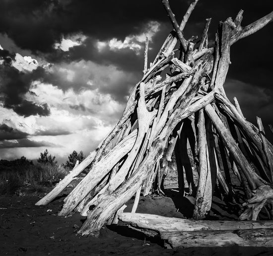 Black & White Blackandwhite Close-up Cloud Cloud - Sky Cloudy Day Landscape Log Lot Cabin Nature No People Non-urban Scene Old Outdoors Sky The End Tranquil Scene Tranquility Tree Trunk Weather Wood - Material