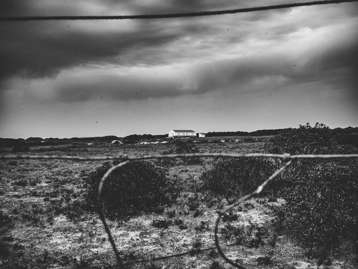 Agriculture Black & White Dramatic Sky Farm Field Landscape_Collection Portugal Tranquility Travel Travel Photography Traveling Black And White Blackandwhite Blackandwhite Photography Bnw Cavaleiro Cloud - Sky Landscape Landscape_photography Photography Rural Scene Scenics Scenics - Nature Sky Travel Destinations