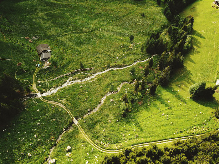 High angle view of road amidst trees on landscape