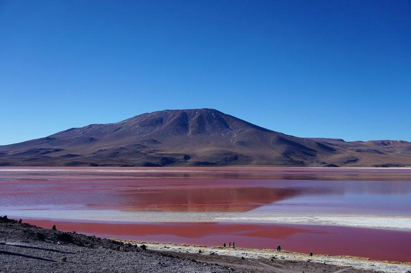 America Latina Beauty In Nature Blue Bolivia Clear Sky Day Laguna Colorada Laguna ColoradaBoLiva Landscape Mountain Nature No People Outdoors Salt - Mineral Scenics Sky South America Tranquil Scene Tranquility Water