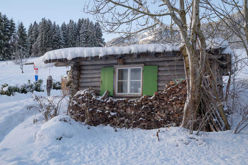 Allgäu Home Winter Wintertime Architecture Bare Tree Building Exterior Built Structure Cold Temperature Day Hut Nature No People Outdoors Refugium Sky Snow Tiny House  Tree Winter