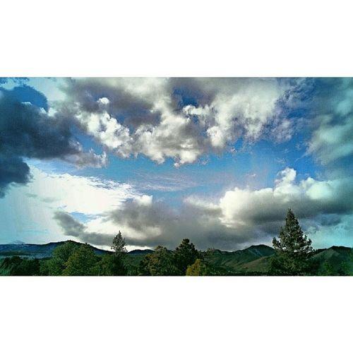 Jemez Rockymountains Newmexico Ponderosa pine trees nature naturelovers sky skyporn cloud cloudporn cerrogrande