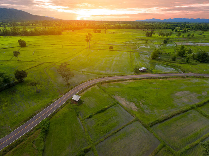 Aerial View of Green Rice Field in Nakhonphanom Thailand at Sunset. Landscape Environment Scenics - Nature Tranquil Scene Sky Beauty In Nature Plant Sunset Tranquility Nature Field Green Color No People Land Grass Rural Scene Transportation Road Aerial View Tree Outdoors