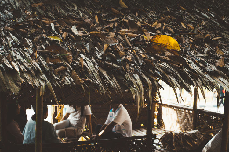 People sitting in thatched roof hut