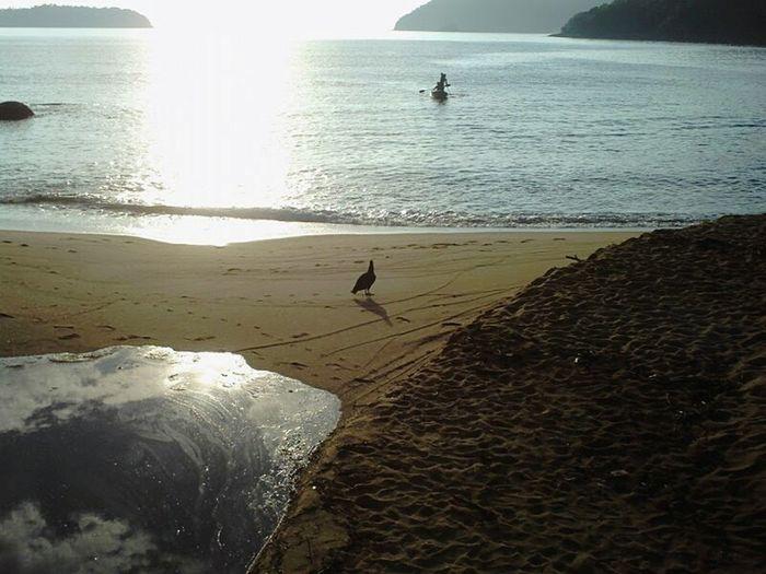 Perfeito🍃🍀🌻☀ Feal The Journey First Eyeem Photo Ilhagrande Ilhagranderj Ilhagrandebr Brazil Brasil Beach Amanhecer Viagens  Viagensincriveis Viajar