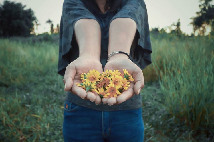 Flower Flowering Plant One Person Field Real People Nature Land Fragility Midsection Vulnerability  Holding Day Freshness Casual Clothing Leisure Activity Focus On Foreground Lifestyles Hand Flower Head Outdoors Hands Cupped Finger Human Arm Exit The Camera Yellow Flowers In Hand
