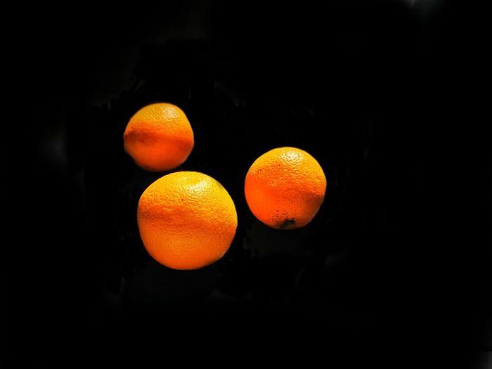 Close-up of orange fruits against black background