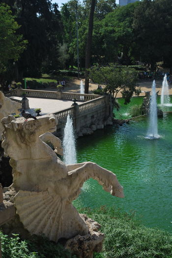 Barcelona Barcelona, Spain Built Structure Catalonia Catalunya Day Fountain Fountain Fountains Horse Military Nature No People Outdoors Park SPAIN Statue Stream - Flowing Water Tree Water Waterfall