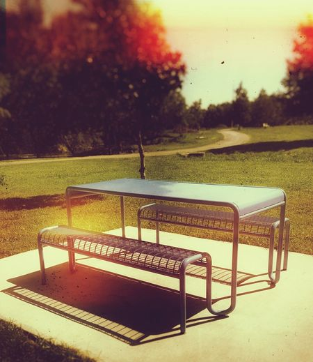 Parks Parks And Recreation Trees Table And Bench Sunny Day Light And Shadow Shadow Cast