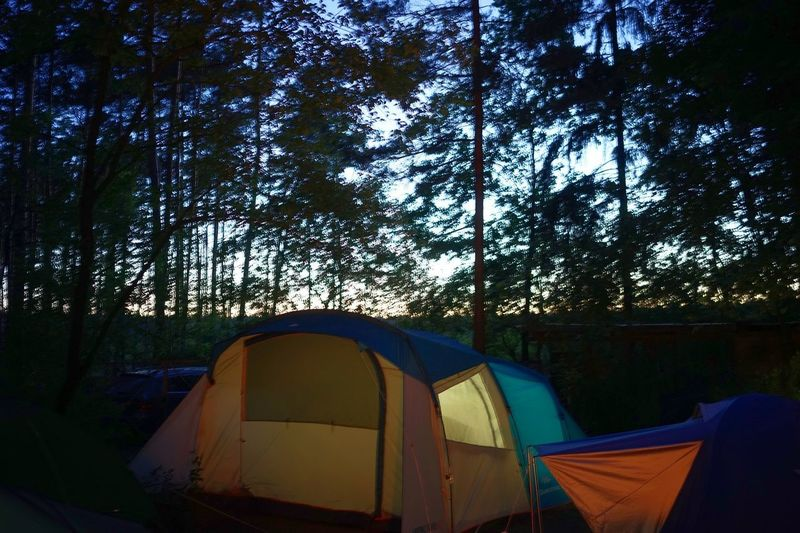 Good night Leisure Activity Vacations Camping Dusk Evening Sky Tree Plant Tent No People Nature Camping Architecture Growth Outdoors Forest Tranquility Beauty In Nature