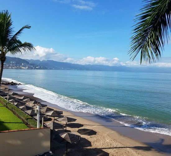 Horizon Over Water Beauty In Nature Sea Beach Water Sand Tranquility Day Sky Tranquil Scene Vacations No People Travel Destinations Palm Tree Connected By Travel Enjoying Nature Enjoy Life On Vacation!  Puerto Vallarta Tropical Climate Lost In The Landscape