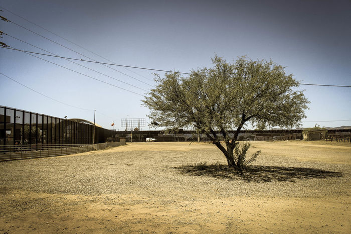 First time at this location, people from Mexico were walking over to a local Walmart or other service places, then walking back to their country. Bare Tree Border Cable Day Diminishing Perspective Empty Mexico Power Line  Road Tree U.S. Wall Streamzoofamily Ladyphotographerofthemonth EyeEm Arizona