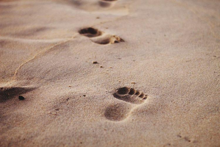 High angle view of footprints on sand