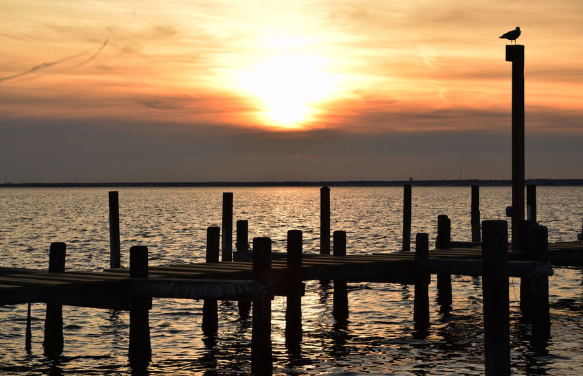 Sunset at the Dock D Dock Island Beach State Park New Jesey Ocean Outdoors Pier Sea Seaside Silhouette Staten Island Beach Sunset Vacations Water Waterfront