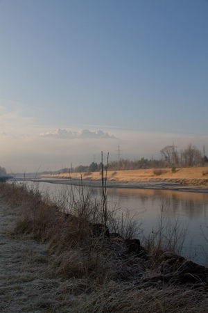 Rhein Beauty In Nature Border Cold Temperature Day Fog Morning Scenery Nature No People Outdoors Rheinufer River Sky Switzerland Tranquility Water Winter