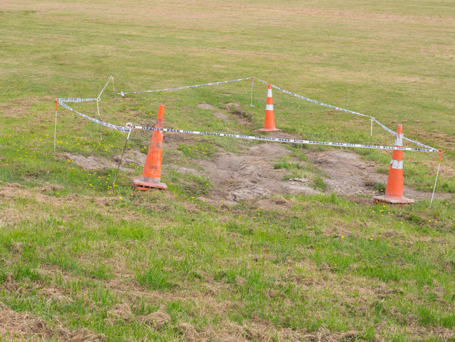 Road cones around a patch of grass Cordon Tape Field Grass New Grass Protection Road Cones Traffic Cone