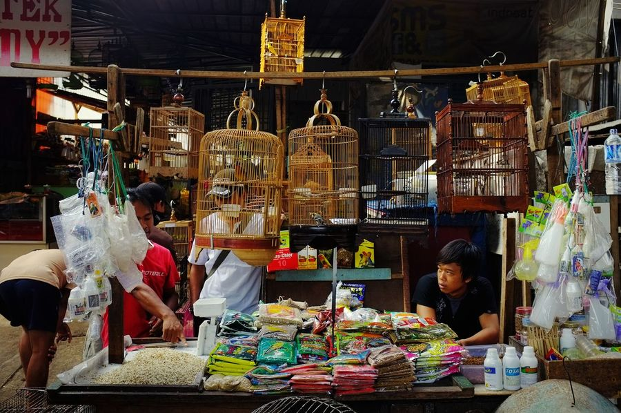 Bird Cage Shop Bird Cage Cage Animal Animal Food Market Choice Retail  Carousel City Market Stall Store For Sale Birdcage Stories From The City EyeEmNewHere