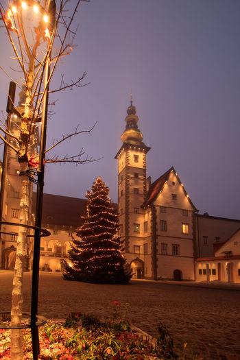 Illuminated christmas tree by building against sky