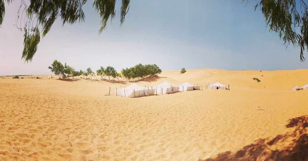 Desert living Nature Outdoors Sand Scenics Tranquility No People Clear Sky Beauty In Nature Day Senegal Beauty In Nature