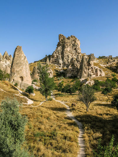 Uchisar castle in Cappadocia, Turkey Cappadocia Beauty In Nature Blue Clear Sky Cliff Day Landscape Mountain Nature No People Outdoors Physical Geography Rock - Object Rock Formation Scenics Sky Tranquil Scene Tranquility Travel Destinations Tree Uçhisar