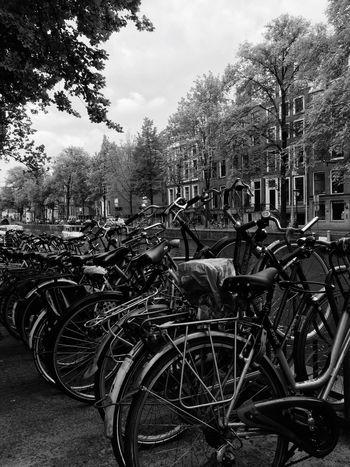 Bicycles Amsterdam Amsterdamcity Velos Blackandwhite The Street Photographer - 2017 EyeEm Awards