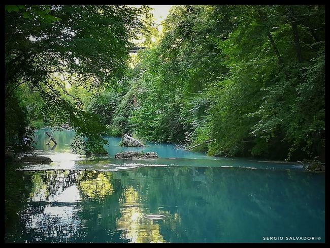 INTO THE WILD Water Nature Outdoors Photography Travelphotography Tuscanymylove Beauty In Nature Peacefull Chiantishire Parcofluviale River Fotografia Natural Parkland Travels Goodlife No People Goodvibes Ontheroad Color Photography Colorful
