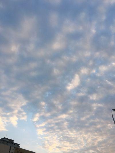 大魯閣草衙道 草衙 工地 臺灣 一月 Kaohsiung Taiwan January Taiwanese 高雄 天空 雲 Sky