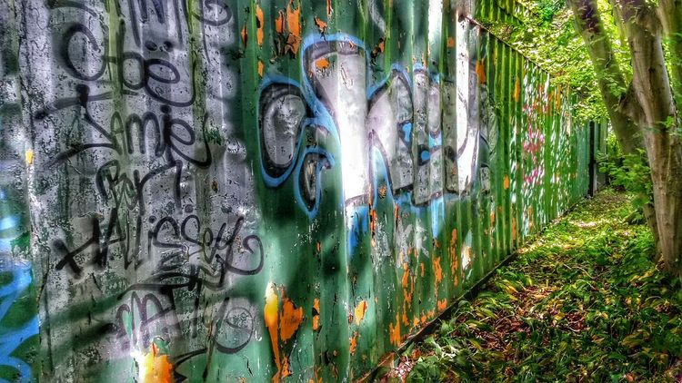 Taking Photos Landscape Nature Photos Around You Celbridge Tree And Sky Hanging Out Relaxing Taking Photos Graffiti Art