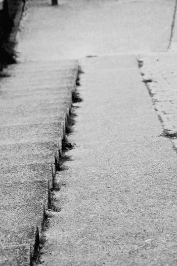 The Way Forward Footpath Day No People Outdoors Asphalt Walkway Stone Material