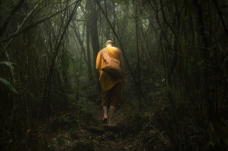Rear view of monk wearing traditional clothing walking in forest