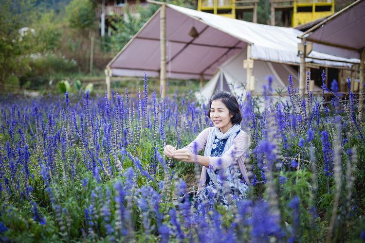 Smiling woman amidst purple flowering plants on field