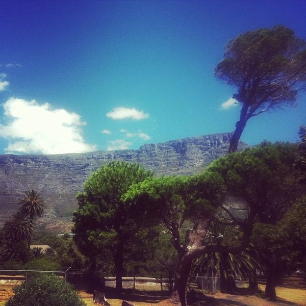 Never get bored of this view Tablemountain Capetown @ashantilogde @hostelling Lovecapetown Ilovecapetown meetsouthafrica