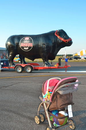 Adult Baby Balloon Festival Beef Ad Cow Day Kentucky  Outdoors People Sky Stroller