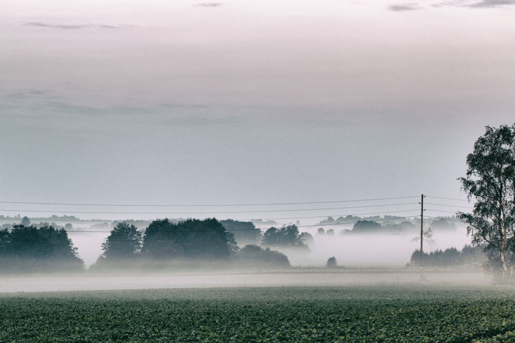 View Of Field In Fog Against Sky