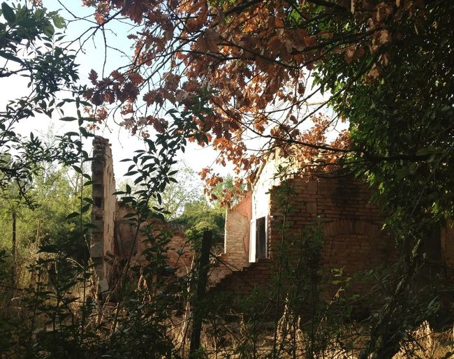 Rural Scenes Abandonedbuilding Taking Photos CiociariaEye