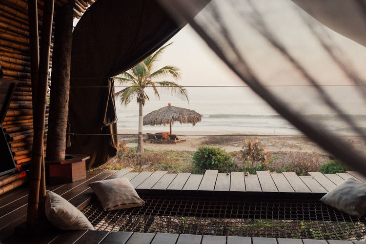 Palm trees by sea seen through window
