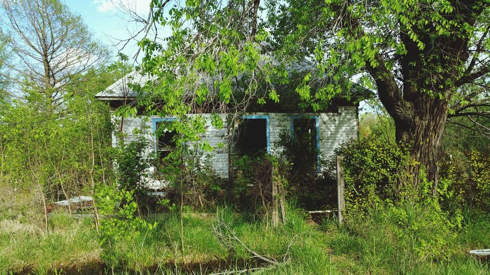 Abandoned Rural Scene Green Color No People Outdoors Growth Nature Architecture Building Exterior Tree Picher, Oklahoma
