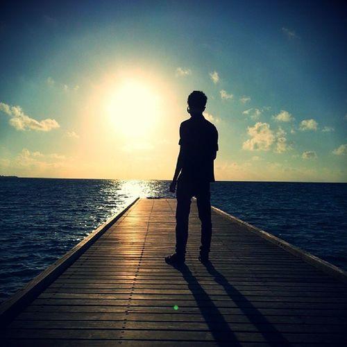 Sunset Sharoon Shadow
