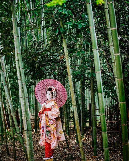 The Portraitist - 2017 EyeEm Awards The Great Outdoors - 2017 EyeEm Awards Tree Bamboo - Plant Nature Bokehphotography Bokeh Photography Outdoors Picoftheday Photooftheday Explorejapan EyeEmNewHere Nikon D750 Kimono Dress Japangirl Traditional Clothing Art Is Everywhere