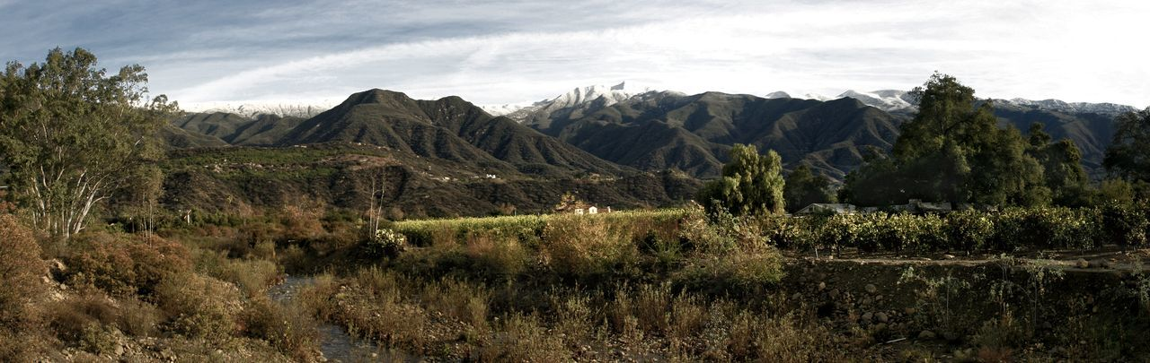 Ojai Valley With Snow Landscape shot of the Ojai valley with snow on the mountains. Agriculture California Cold Forest Ice Landscape Mountain Mountains Nature Ojai Outdoors Panorama Panoramic Scenery Scenic Sky Snow Snowy Toursim Travel White Winter