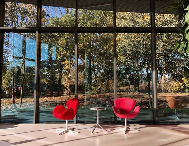Chair Glass - Material Red Seat Window Transparent No People Indoors  Day Sunlight Glass Shadow Table Nature Absence Plant Tree Empty Architecture Luxury Capture Tomorrow