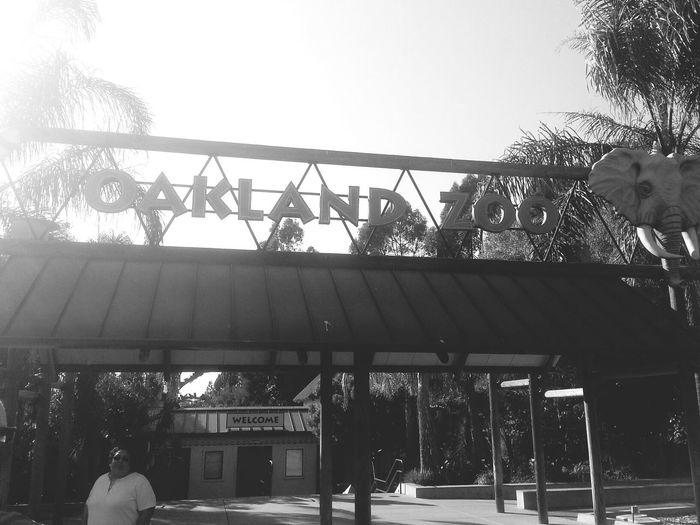 Oakland Zoo Zoo