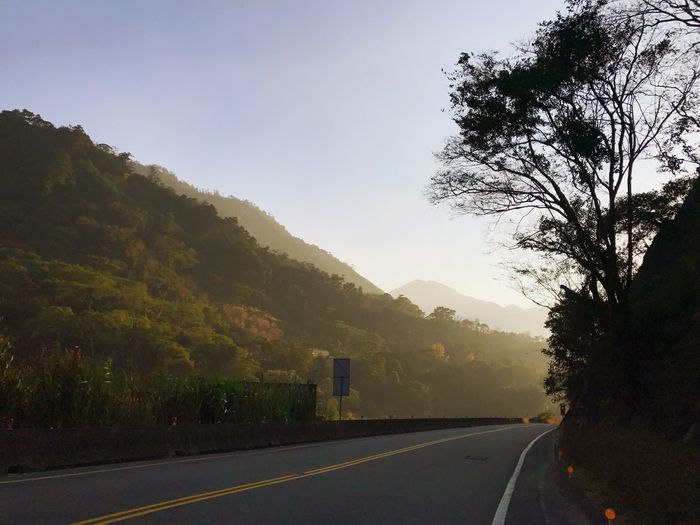 Tree Plant Road Sky Transportation Mountain Nature No People Direction Beauty In Nature The Way Forward Sign Symbol Road Marking Scenics - Nature Tranquility Outdoors Mode Of Transportation Marking Growth