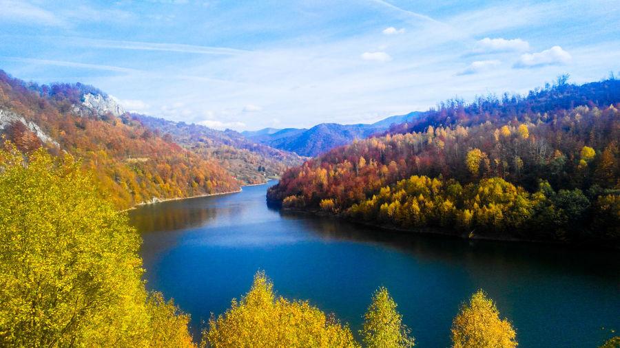 Lake Scenics