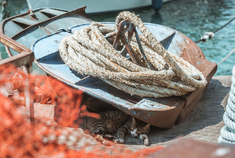 Close-up Day Fishing Industry Focus On Foreground Food Food And Drink High Angle View Leaf Leaves Mode Of Transportation Nature Nautical Vessel No People Outdoors Plant Part Rope Selective Focus Still Life Sunlight Tied Up Transportation