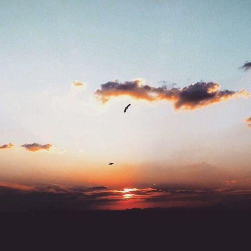 Chasing the sun Freedom Skystream Cloudstream Sunstream Sunset VIT evening Instaclick click_freak