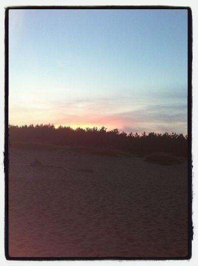 夕陽、、、