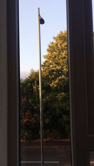 a slightly wonky picture from my window. Autumn Leaves Window Day Autumn On Its Way! Nature