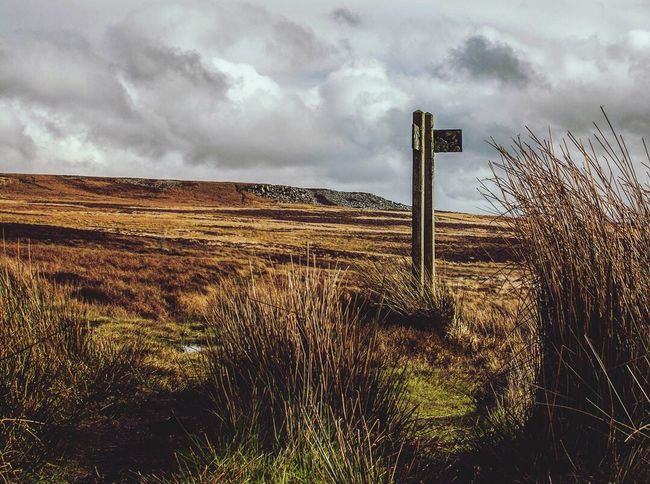 Which path to follow? Mountain hikes in wales Sky Cloud - Sky Nature No People Field Landscape Tranquility Outdoors Tranquil Scene Day Scenics Grass Beauty In Nature Wales EyeEmNewHere Adventure Mountain Gloomy Grey Sky Overcast Sign Path